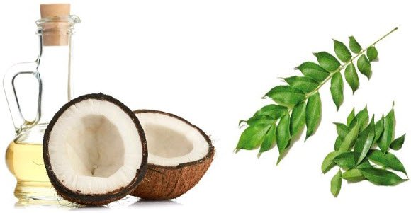 Curry Leaves and Coconut Oil for hair