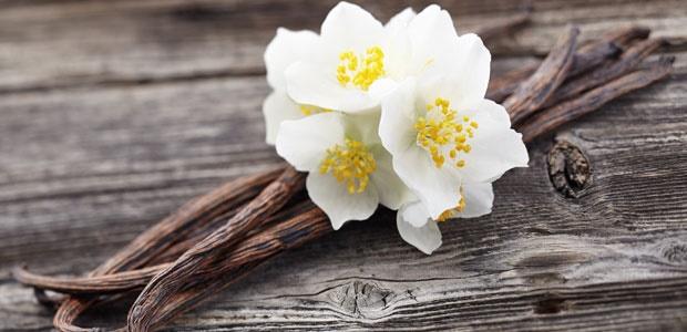 10 Impressive Benefits Of Vanilla