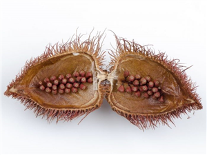 9 Incredible Benefits Of Annatto Seeds